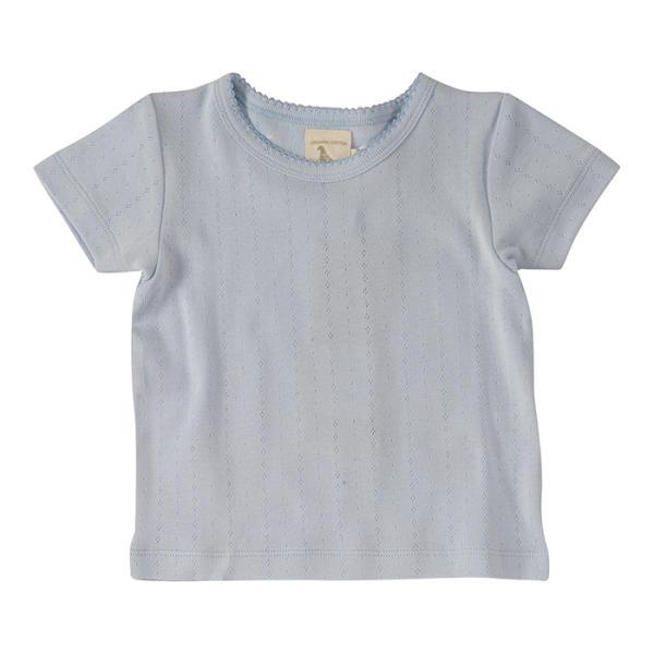 Pigeon Organics Kinder T-Shirt, versch. Größen und Farben