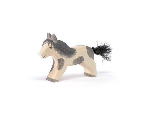 Ostheimer Shetland Pony laufend